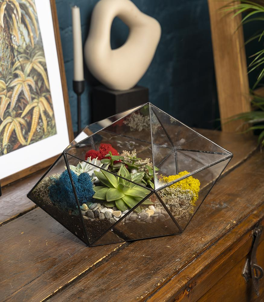 Купить флорариум кристалл с суккулентами